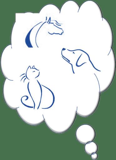Communication animale – Région Centre – parler au animaux